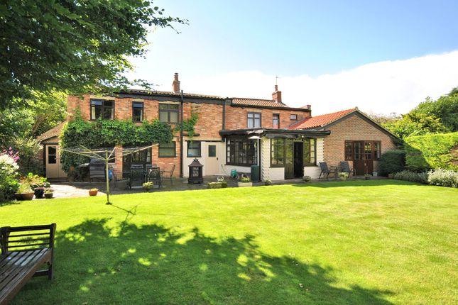 Thumbnail Detached house for sale in Lynn Road, Gayton, King's Lynn
