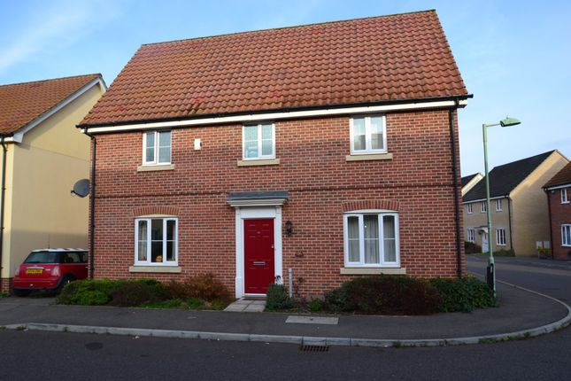 Thumbnail Detached house to rent in Bramble Walk, Red Lodge, Bury St. Edmunds