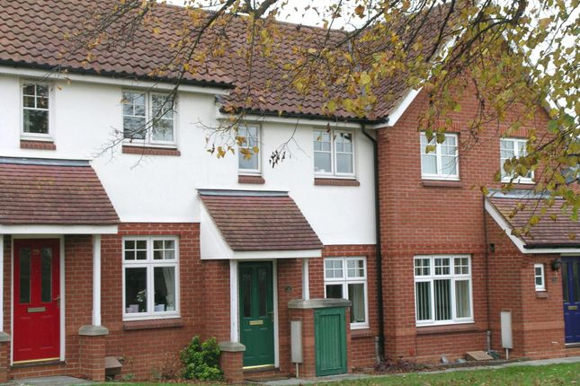 Thumbnail Property to rent in Eastward Place, Stowmarket