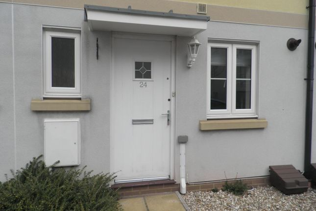 Thumbnail Town house to rent in Mckay Avenue, Torquay