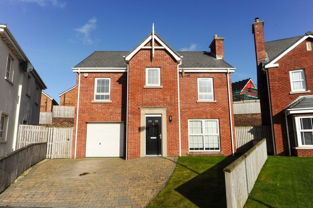 Thumbnail Detached house for sale in Millreagh Avenue, Dundonald, Belfast