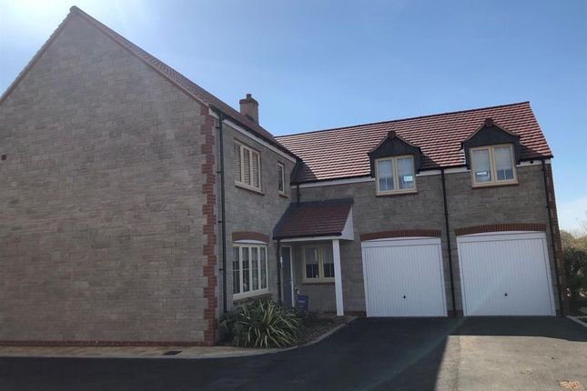 Thumbnail Detached house for sale in Muntjac Road, Langford, North Somerset