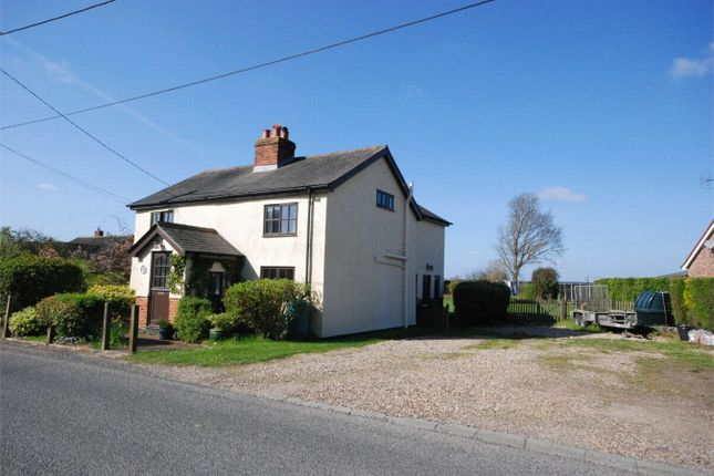 Thumbnail Detached house for sale in Church Road, Greenstead Green, Essex