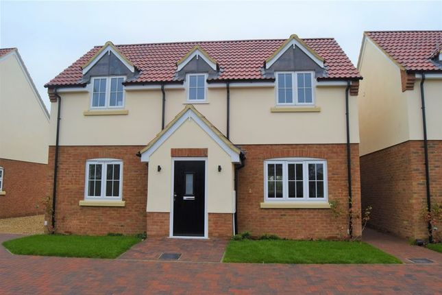 Thumbnail Detached house to rent in Colmworth Road, Little Staughton, Bedford