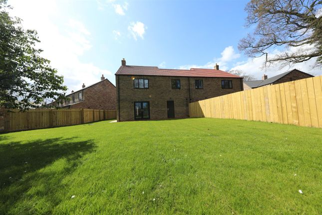 Thumbnail Semi-detached house for sale in Saltshouse Road, Hull