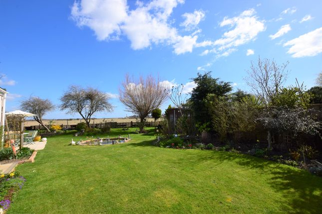 Thumbnail Bungalow for sale in Tower Close, Pevensey Bay