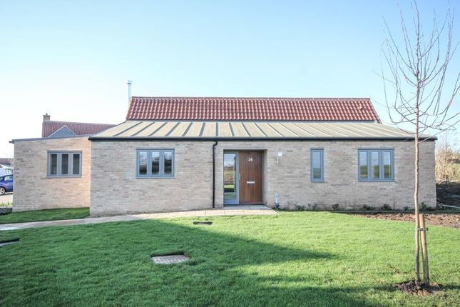 Thumbnail Detached bungalow for sale in Ash Place, Berry Close, Stretham, Ely