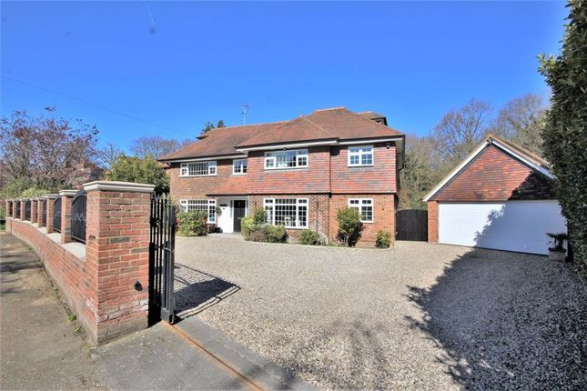 Thumbnail Detached house for sale in Glanthams Close, Shenfield, Brentwood