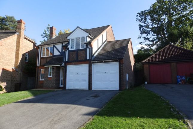 Thumbnail Detached house to rent in Ward Close, Wadhurst