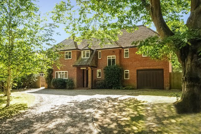 Thumbnail Detached house to rent in The Fairway, Godalming