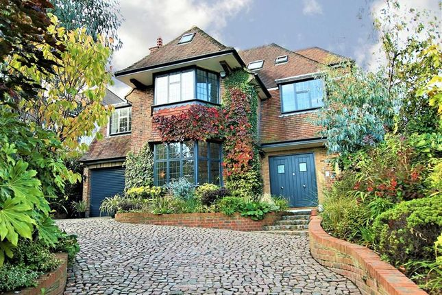 Thumbnail Detached house for sale in Oakleigh Avenue, Whetstone, London