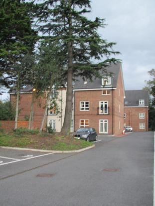 Thumbnail Flat to rent in Harrow Road, Middlesbrough