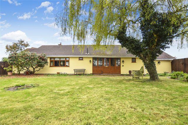Thumbnail Detached bungalow for sale in Danson Road, Bexley, Kent