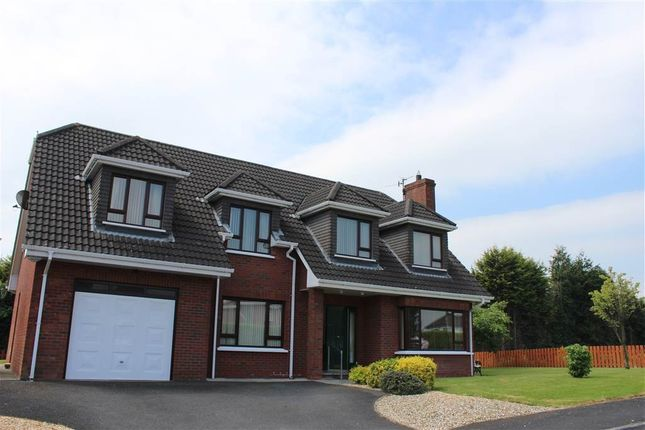 Thumbnail Detached house for sale in Highfields Drive, Newry