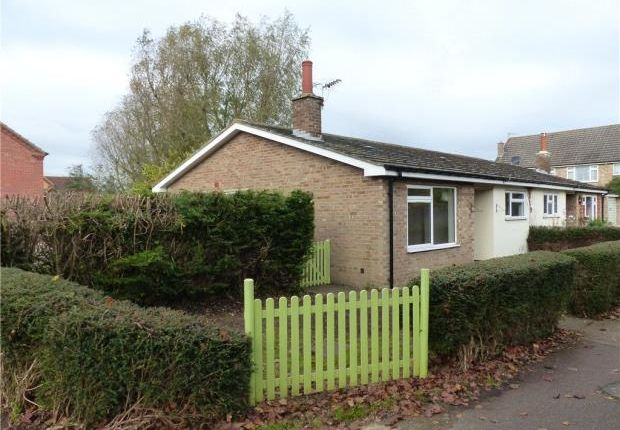 Thumbnail Semi-detached bungalow to rent in Radwell Road, Milton Ernest, Bedford