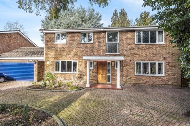 Thumbnail Detached house for sale in Elm Road, Woking