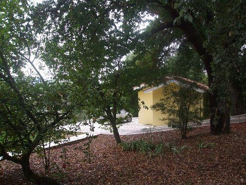 Image of Miranda Do Corvo, Coimbra, Mira, Coimbra, Central Portugal