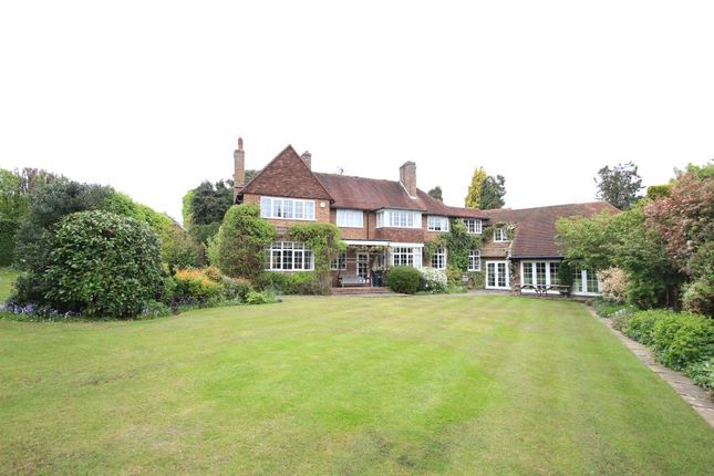 Thumbnail Detached house to rent in Ridgway, Pyrford, Woking