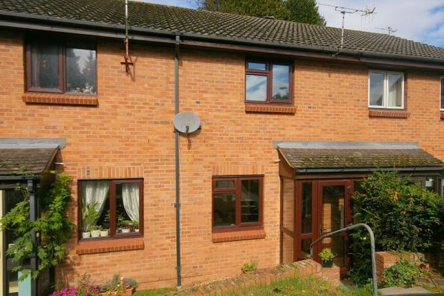 Thumbnail Terraced house to rent in Lime Close, Minehead