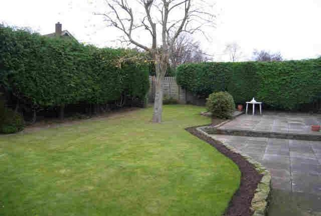 Thumbnail Detached bungalow to rent in Fountains Road, Northallerton