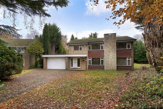 Thumbnail Detached house for sale in Malton Way, Tunbridge Wells