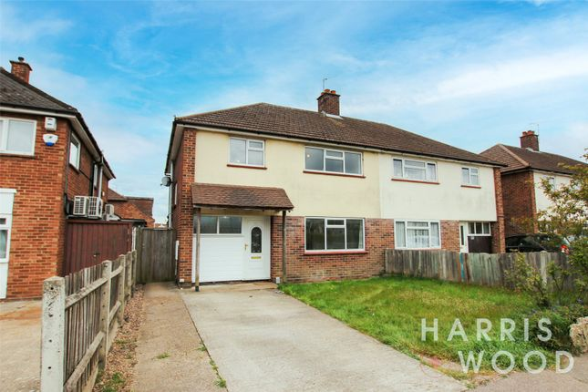 3 bed semi-detached house to rent in The Commons, Colchester CO3