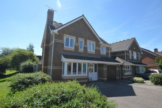 Thumbnail Detached house for sale in Mead Way, Monkton Heathfield, Taunton, Somerset