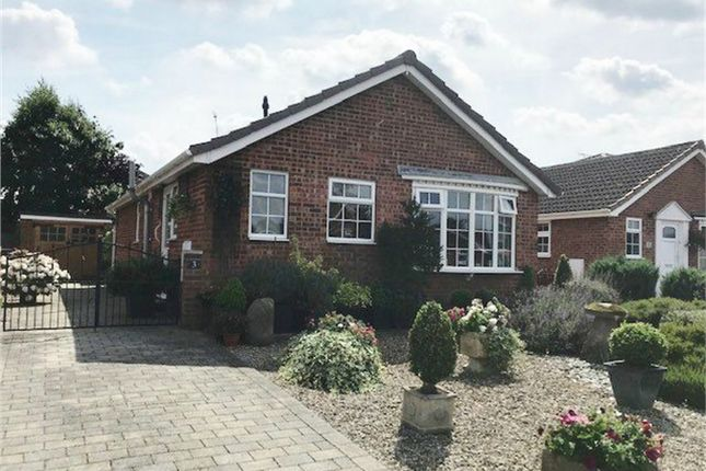 Thumbnail Detached bungalow to rent in Ox Calder Close, Dunnington, York