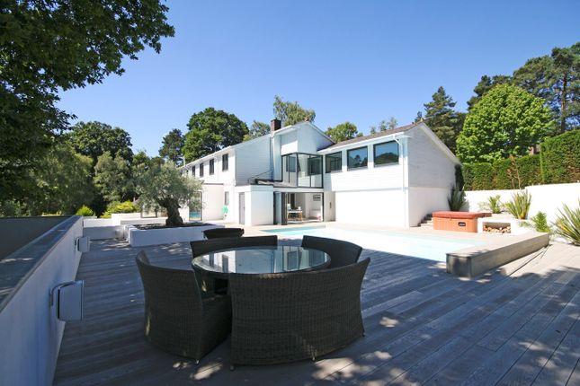 Thumbnail Detached house for sale in Egmont Drive, Avon Castle, Ringwood