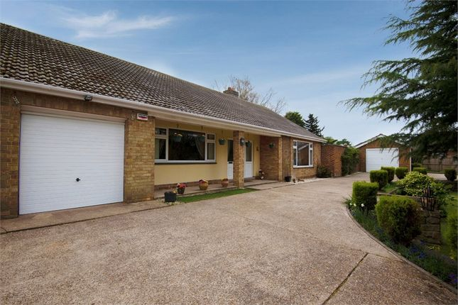 Thumbnail Detached bungalow for sale in Horsegate Field Road, Goxhill, Barrow-Upon-Humber, Lincolnshire