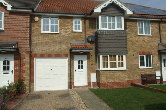 Thumbnail Terraced house to rent in North Harbour, Eastbourne