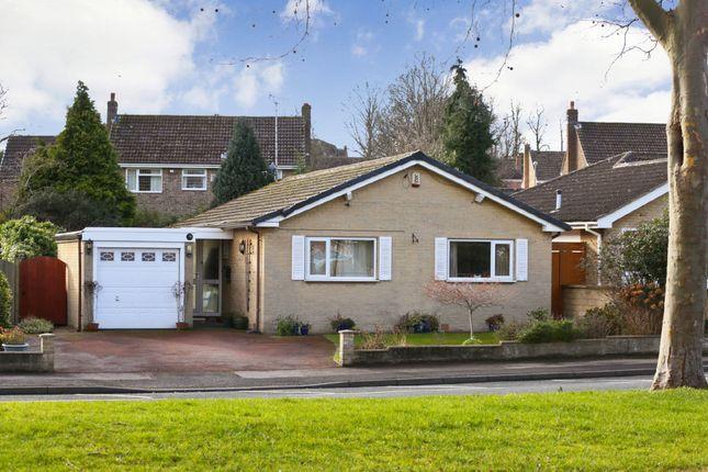 Thumbnail Detached bungalow for sale in Walton Lane, Sandal, Wakefield