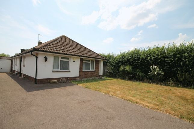 Thumbnail Bungalow to rent in Warblington Road, Emsworth