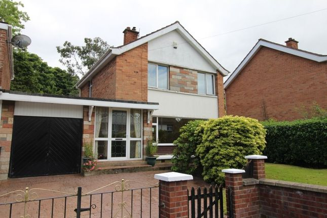 Thumbnail Detached house to rent in Craigowen Road, Holywood