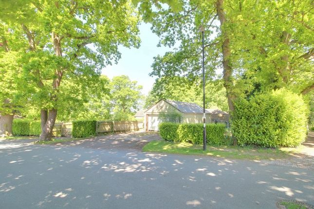 Photo 15 of Woodland Way, Purley CR8