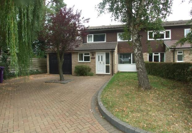Thumbnail Semi-detached house to rent in Howards Wood, Letchworth Garden City