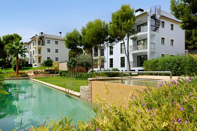 Camp De Mar Mallorca New Apartments, Andratx, Majorca, Balearic Islands, Spain