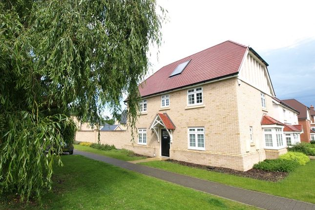 Thumbnail Detached house to rent in Main Road, Tower Park, Hullbridge, Hockley