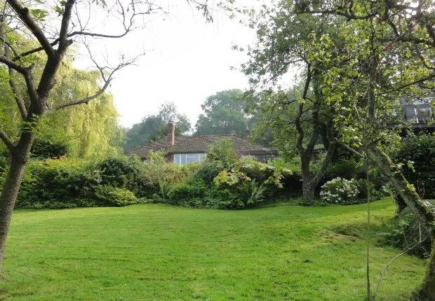 Thumbnail Detached house to rent in The Purlieu, Upper Colwall, Nr Malvern
