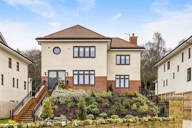 Thumbnail Detached house for sale in Sussex Avenue, Harrogate, North Yorkshire