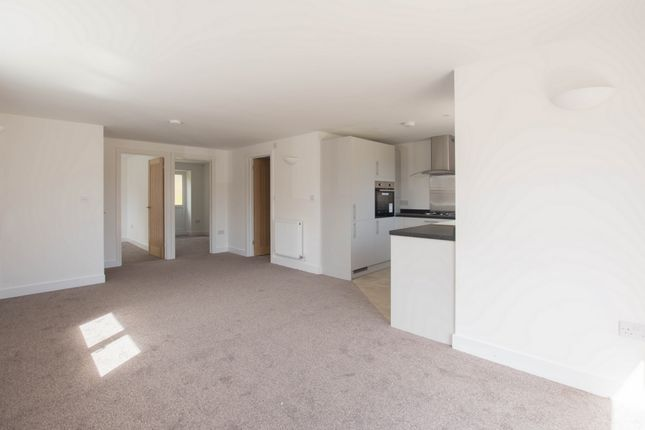 Thumbnail Bungalow for sale in Downs Road, Folkestone