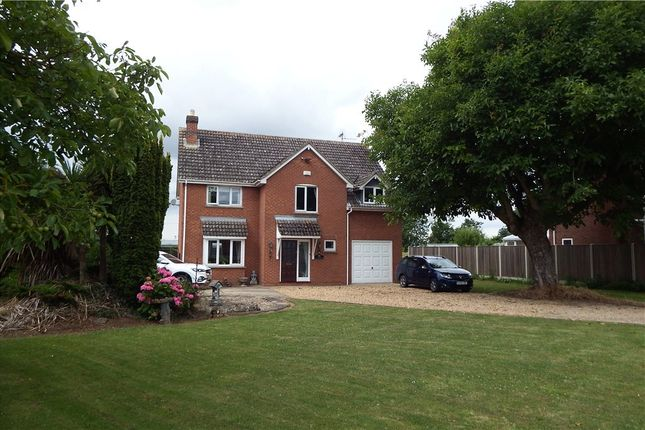 Thumbnail Detached house for sale in Wisbech Road, Long Sutton, Spalding