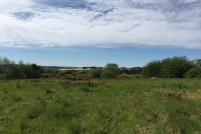Thumbnail Land for sale in Near Cleghorn, Other, South Lanarkshire