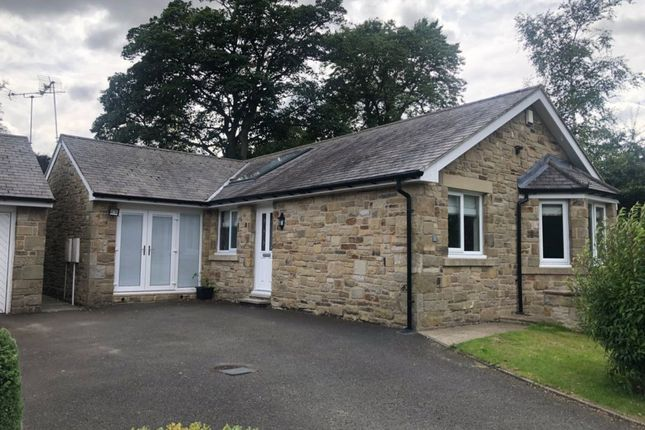 Thumbnail Detached bungalow to rent in Crowlea Road, Longhoughton, Northumberland