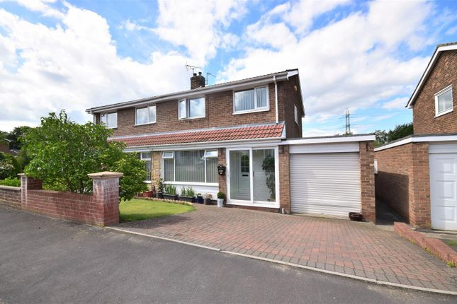 Thumbnail Semi-detached house for sale in Park Lea, East Herrington, Sunderland