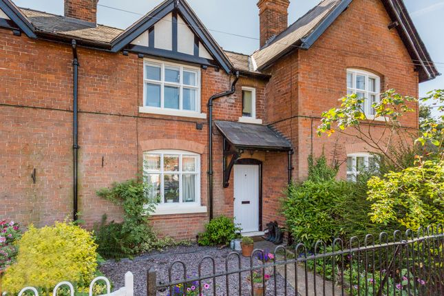 Thumbnail Terraced house to rent in Church Street, Ightfield, Whitchurch