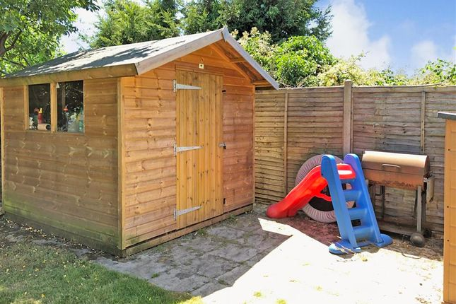 Outside Shed of Monson Road, Redhill, Surrey RH1