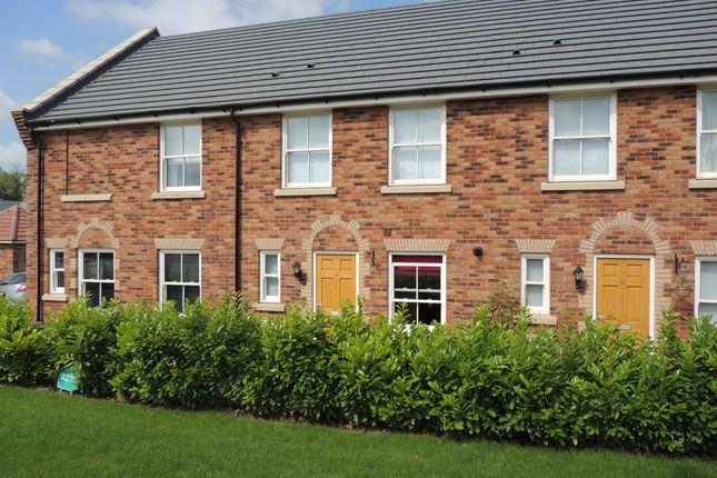 Thumbnail Terraced house to rent in Primrose Avenue, Downham Market