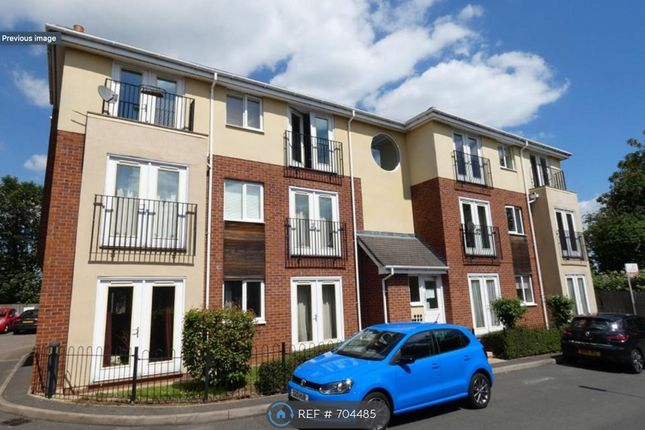 Thumbnail Flat to rent in Mill Point, Derby