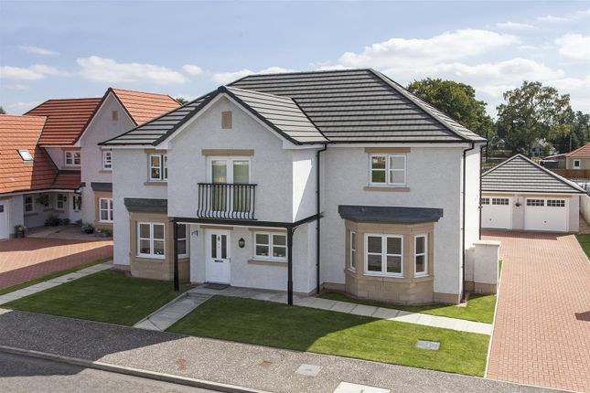 Thumbnail Detached house for sale in David Farquharson Road, Blairgowrie
